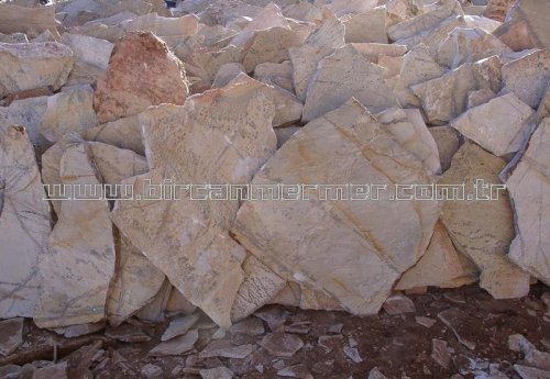 Fossil Slate Stone